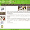 Web Content: Wedding Planning