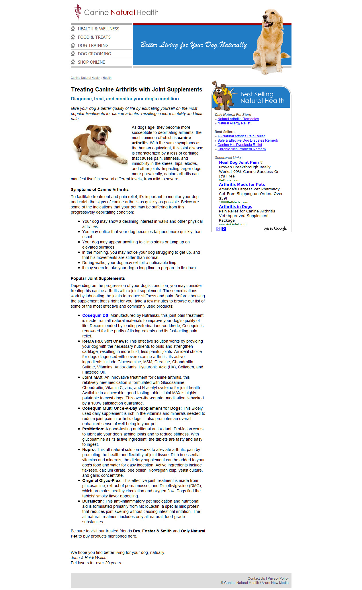 Pet Article: Treating Canine Arthritis